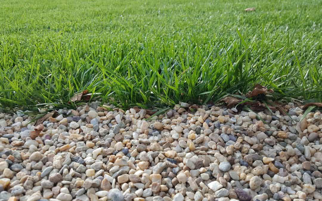 Ścieżki żwirowe w ogrodzie