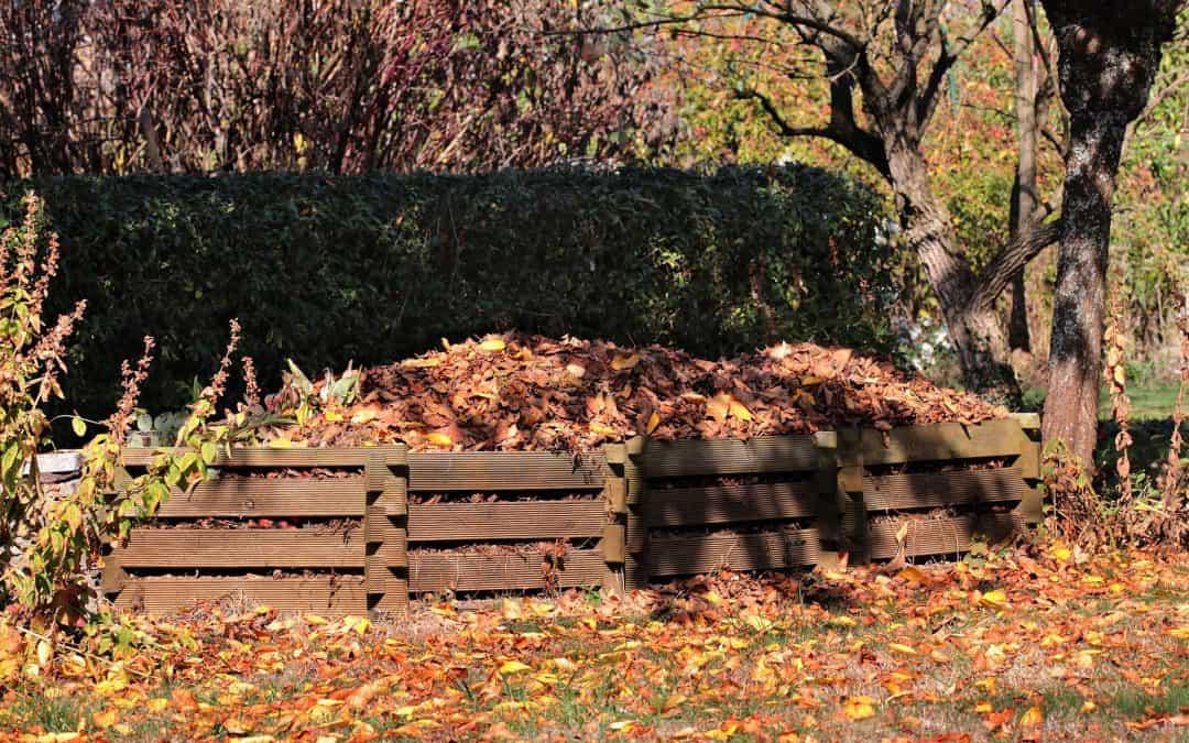 Jesienne nawożenie kompostem