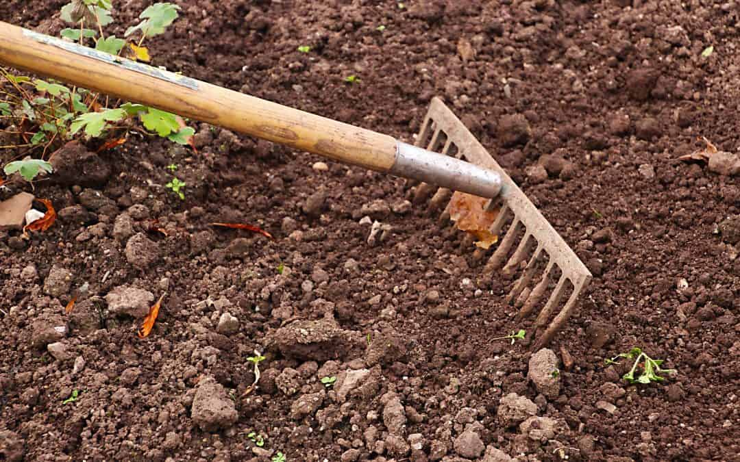 Przygotowanie gleby na zimę