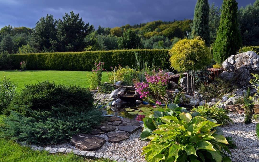 Jak założyć skalniak w ogrodzie?