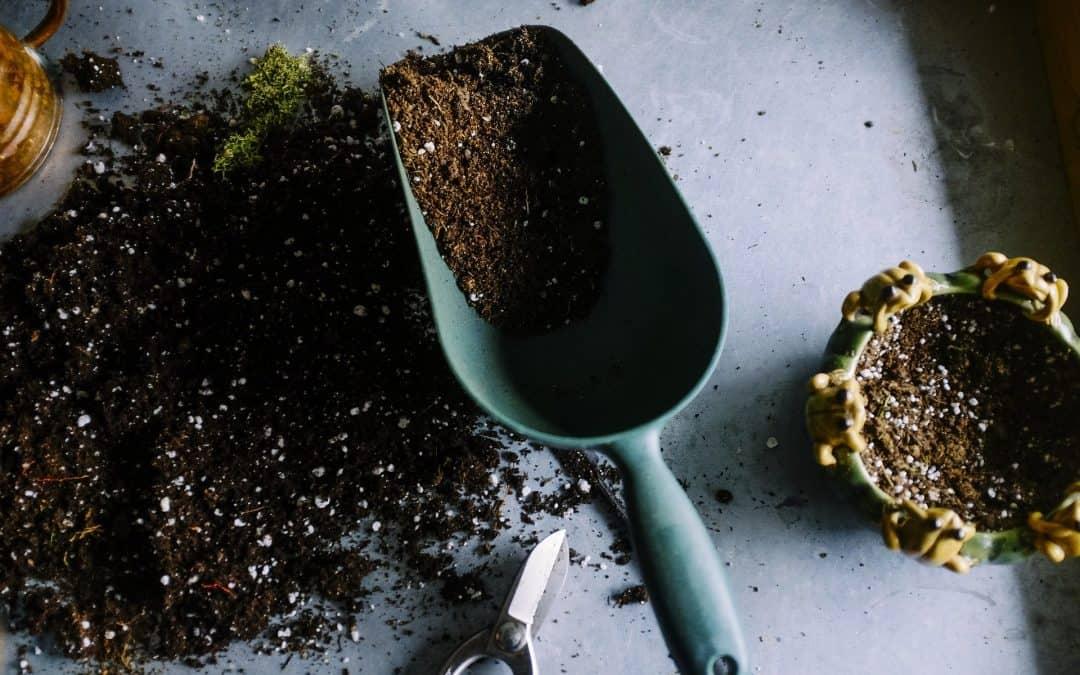 Dlaczego nawożenie organiczne jest lepsze od mineralnego?