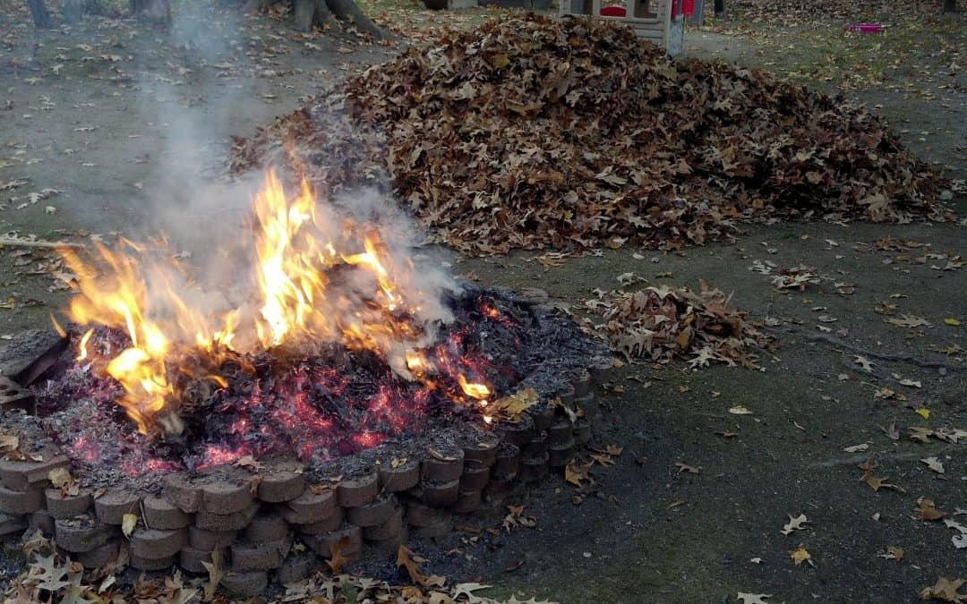 Palenie liści i gałęzi – przepisy