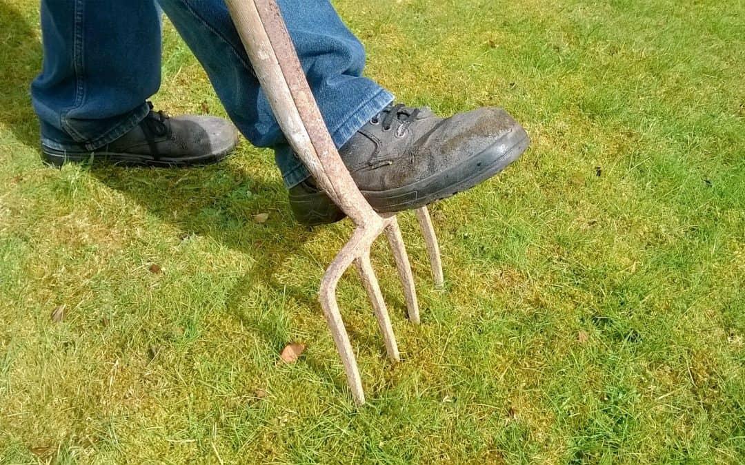 Jak zadbać o glebę jesienią?