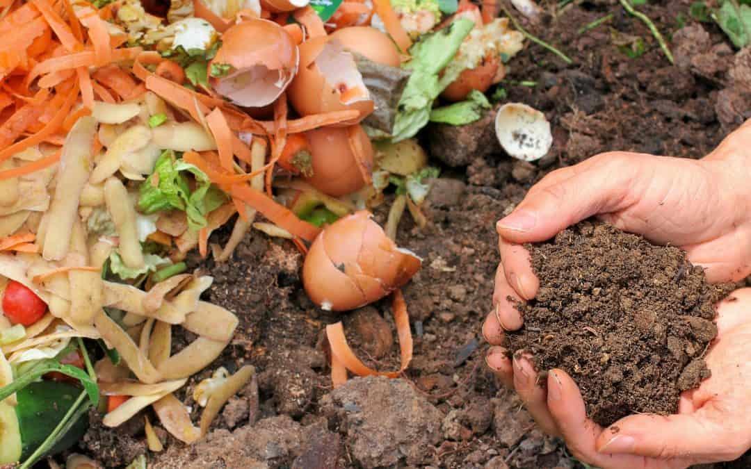 Jak przyśpieszyć proces kompostowania?