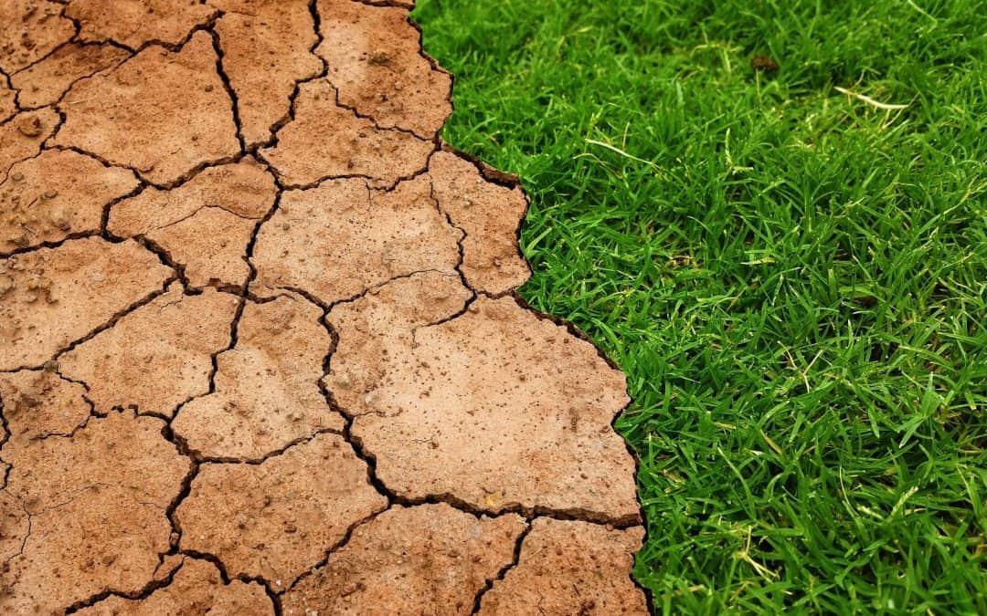 Ile kosztuje badanie gruntu?